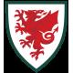 Wales landslagströja
